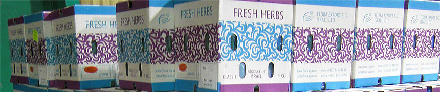 fresh herbs Israel catalog wholesale
